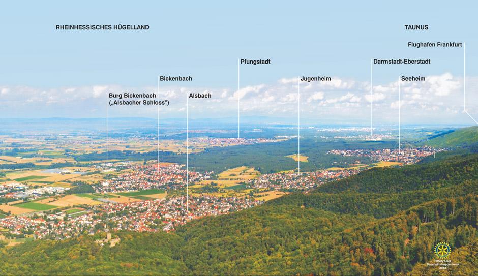 Single pfungstadt